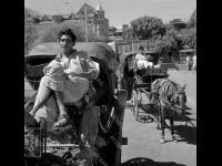 Извозчики на стоянке. Индия, г. Бомбей. 1973 г. Фотограф В. Кошевой.